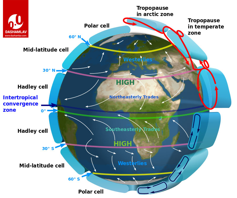 image showing trade winds, hadley cell and coriolis effect